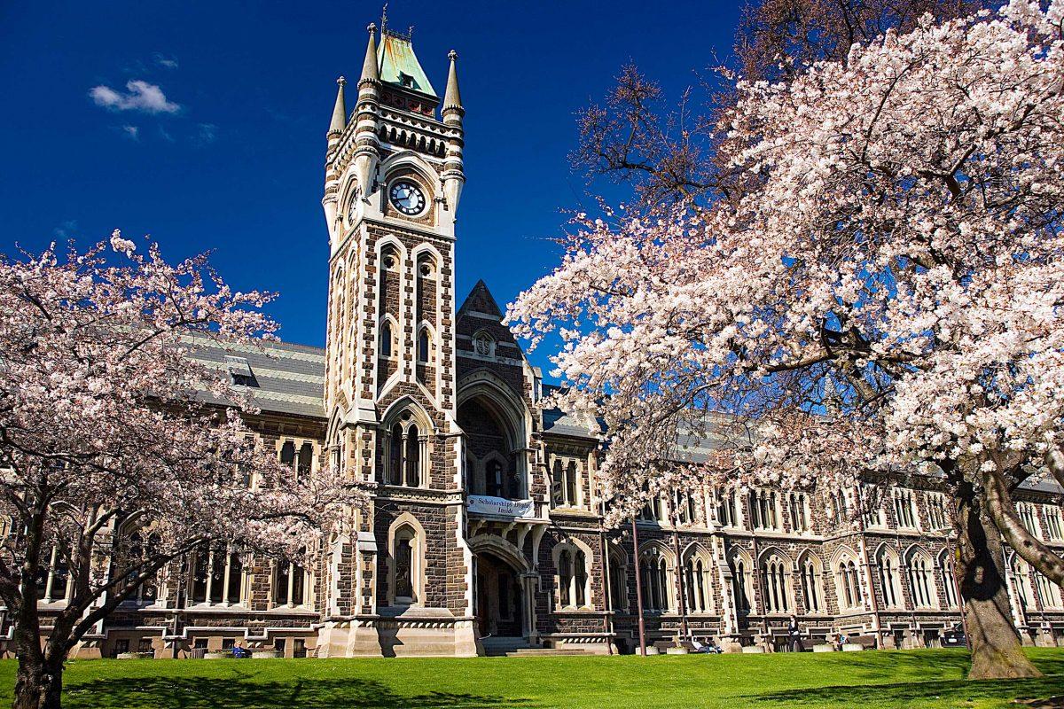 Backpacker Bus Dunedin - Otago University