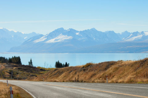 Backpacker Bus - things to know about New Zealand