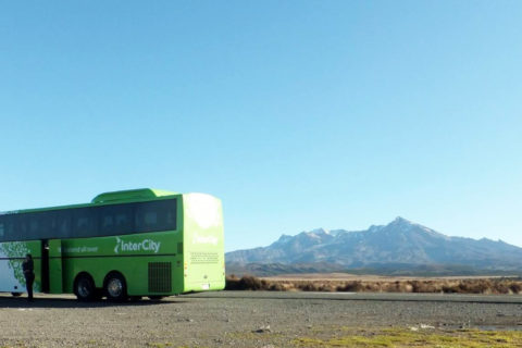 Backpacker Bus - New Zealand travel experiences