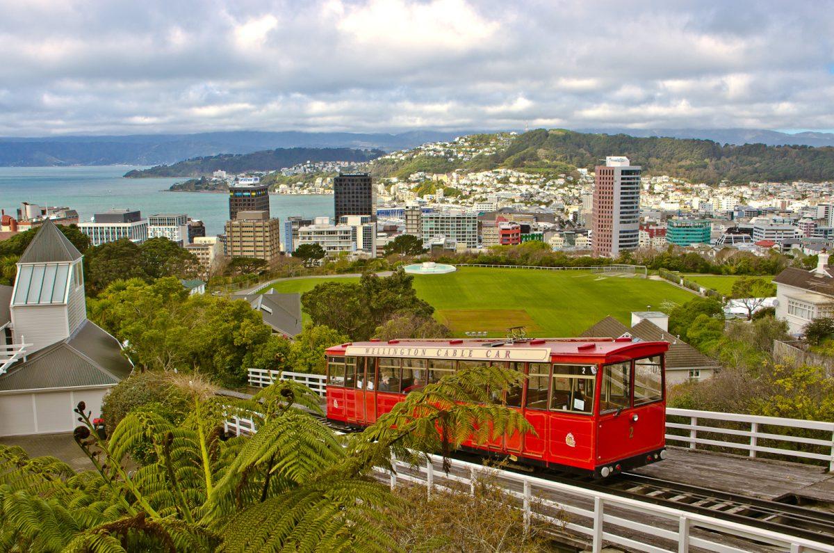 Backpacker Bus - Wellington guide