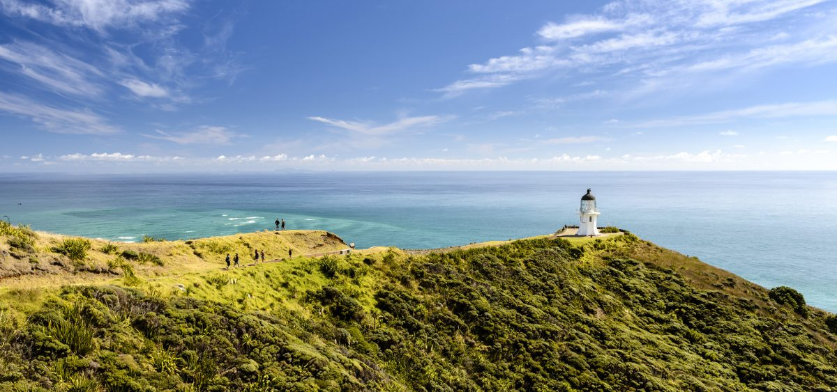 Backpacker Bus Cape Reinga