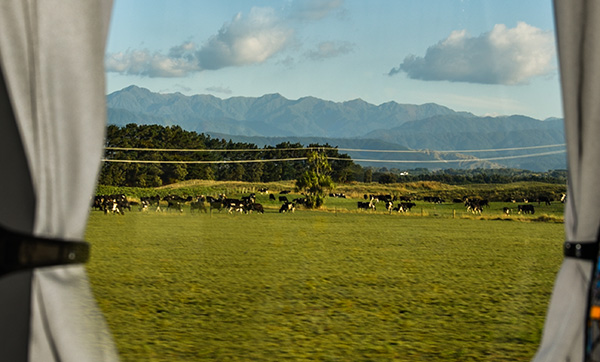 A South Island New Zealand bus travel window view.